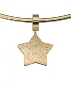 Star Pendants - Paw Print